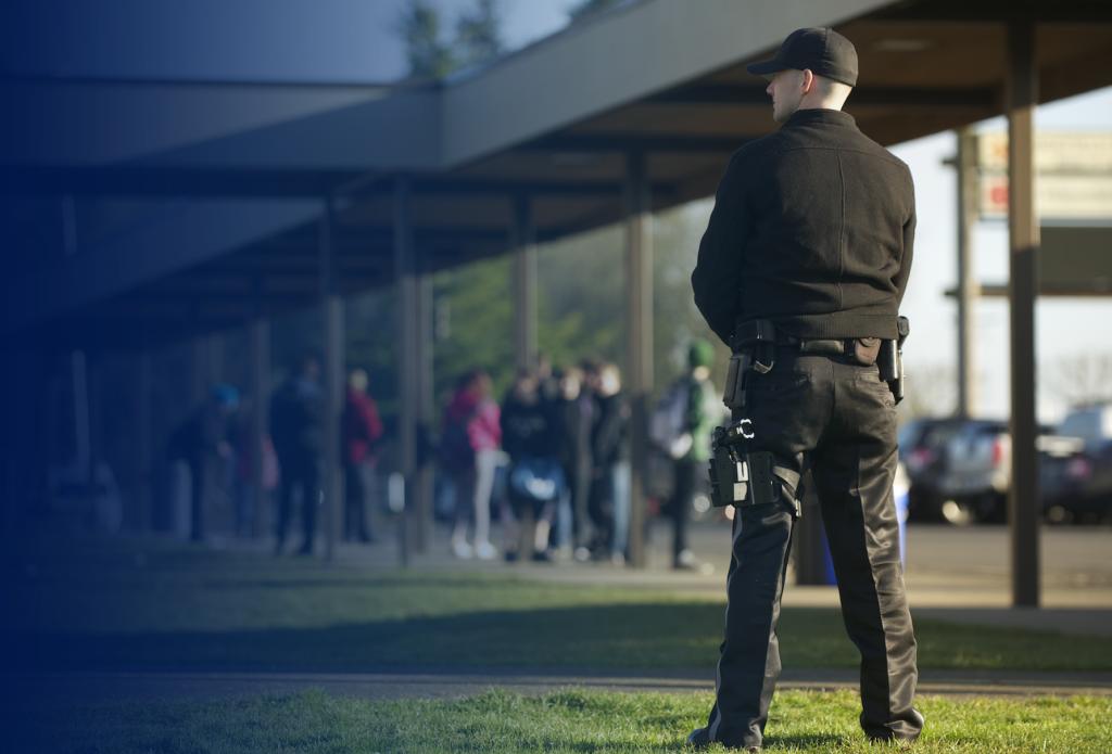 Системы безопасности и охрана социальных объектов